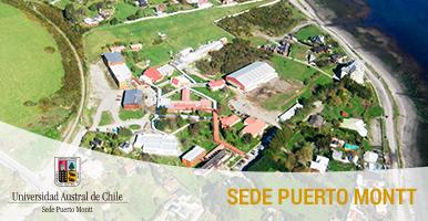 Sidebar Noticias - Puerto Montt